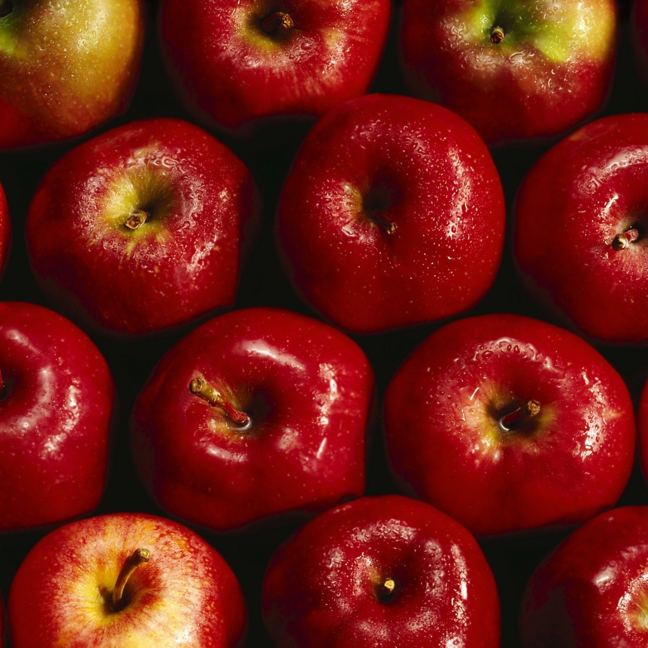 Baltistan Himalayan Organic Apple